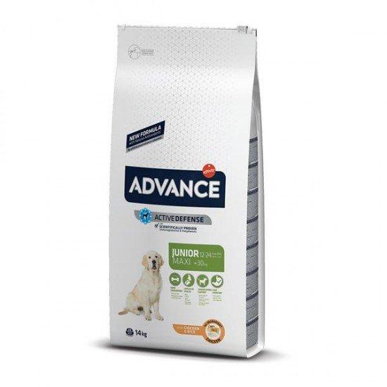 Advance Dog Maxi Junior Büyük Irk Yavru Köpek Maması 14Kg
