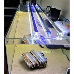 AquaLed Led Aydınlatma Armatür Karışık Renkli Beyaz-Kırmızı-Mavi 40Cm