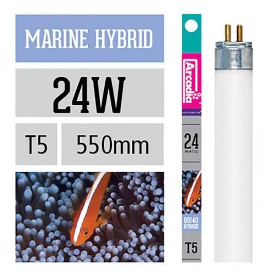Arcadia Marine Hybrid Floresan T5 24W 550mm