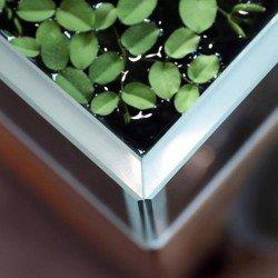 Creaqua 30x30x30Cm 45 Derece Açılı Ultra Extra Clear Cama Cam Akvaryum