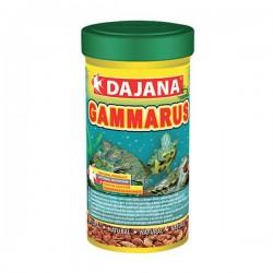 Dajana Kaplumbağa Yemi Gammarus 250 ml 25 Gr