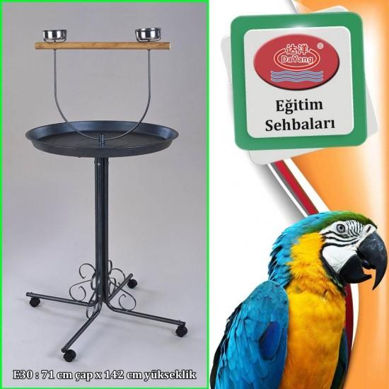 Dayang Papağan Eğitim Sehpası 71x145cm