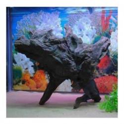 Doğal Mangrove Kökü Büyük Boy 30-35 Cm