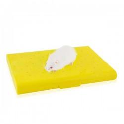 Carno Hamster Yatağı Soğutucu Buz Torbalı