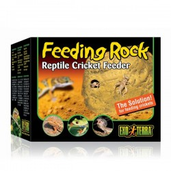 Exo Terra Böcek-Çekirge Kayası