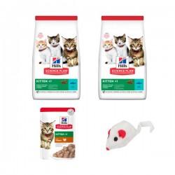 Hills Starter Kit Yavru Kedi Başlangıç Seti