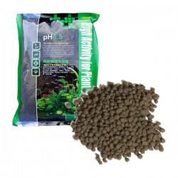 Ista Plant Soil Bitki Toprağı pH 6.5 2Lt