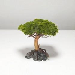 Canlı Moss Sarılı Ağaç Figürü M