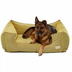 Pet Comfort Alpha Mirandus 24 Köpek Yatağı XL 95x120cm