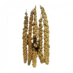 Quik Doğal Darı