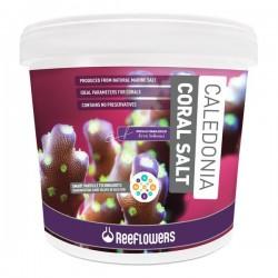 Reeflowers Caledonia Coral Salt 22,5Kg