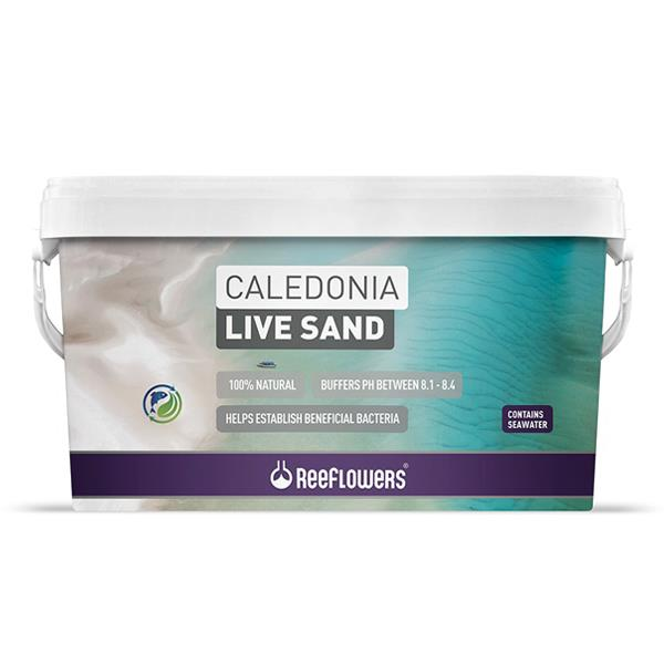 Reeflowers Caledonia Live Sand Purple 18Kg