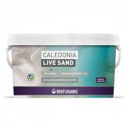 Reeflowers Caledonia Live Sand White 18Kg