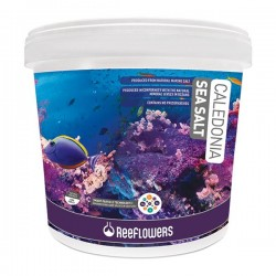 ReeFlowers Caledonia Sea Salt 6500gr