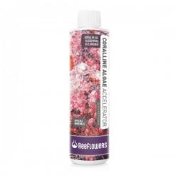 ReeFlowers Coralline Algae Accelerator - Quick Response 500ml
