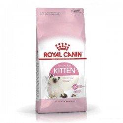 Royal Canin Kitten 36 Kedi Maması 1Kg AÇIK MAMA