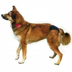 Trixie Hijyenik Köpek Külodu S-M 32–39 cm, Siyah