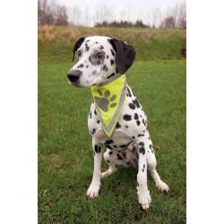Trixie Köpek Bandanası S-M 29-42 cm