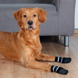 Trixie Köpek Çorabı, Kaymaz, XL, 2 Adet, Siyah
