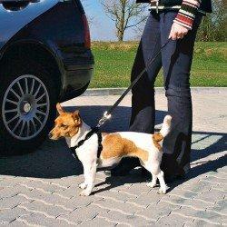Trixie Köpek Emniyet Kemeri S 30-60cm