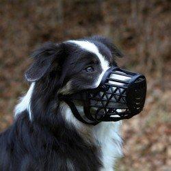 Trixie Köpek Plastik Ağızlık , XL , 35 cm