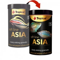 Tropical Soft Line Asia Size S 250ml 125gr
