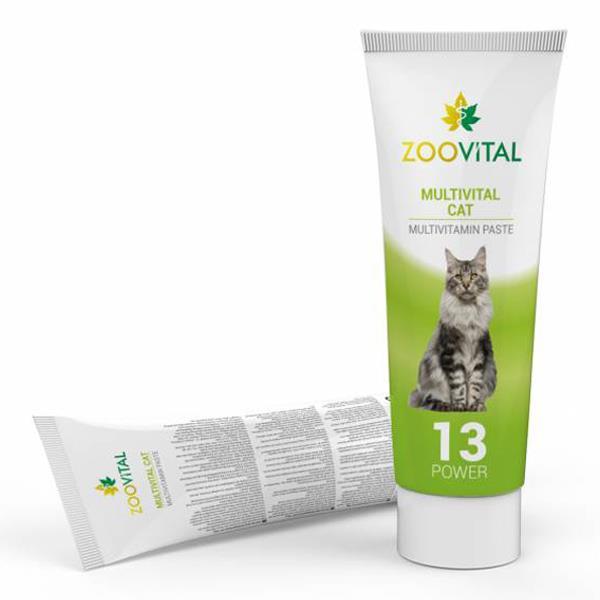 Zoo Vital Multivital Kedi Macunu 100 gr